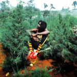 1987, il musicista reggae Peter Tosh viene ucciso a 42 anni durante una rapina nella sua abitazione.